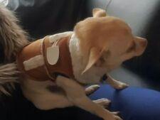 Chihuahua Size (XS) Tan Sheepskin Style UniSex Coat Jacket Dog Pet Clothes