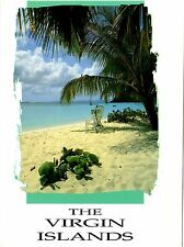 The Virgin Islands Postcard Caribbean White Sand Tropical Water Beach