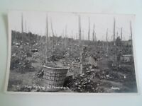 KENT, Faversham, Hop Picking - RARE Vintage 1937 Real Photo Postcard  §A1864