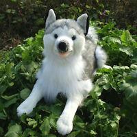 22'' Likelife Husky Dog Plush Toys Simulated Animal Stuffed Soft Emulational Dog