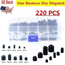 220PCS Metric Hex Head Set Grub Screw Assortment Cup Point Case Stainless Steel