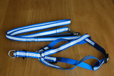 Reflective Dog Harness and Lead Set in Blue