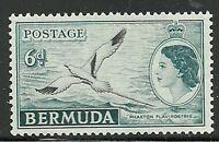 Album Treasures Bermuda Scott # 152  6p Elizabeth Tropic Bird Mint NH