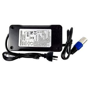 for Ebike 54.6V Output Voltage 5A Charger 48V Lithium Battery