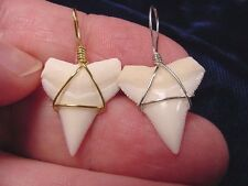 "(S-17) 7/8"" Oceanic White Tip SHARK Tooth GOLD or SILVER pendant SUEDE necklace"