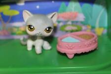 Littlest pet shop Short Hair Grey 2 Tone Kitty Cat Pet with food bowl-Rare Cute