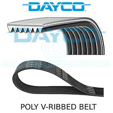 Dayco Poly V Belt - Auxiliary, Fan, Drive, Multi-Ribbed Belt - 7 Ribs - 7PK1153