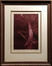 "G.H Rothe ""SHELTER"" artwork tree framed H.Signed Limited Edition paper L@@K"
