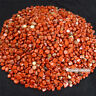 1/2lb Natural Red Jasper Tumbled Crystal Bulk Stone Polished Particled Healing