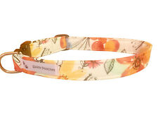 SPIFFY POOCHES Dog Cat Collar Orange Florals  ~B.O.G.O @ 50% OFF C DESCRIPTION~