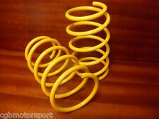 RENAULT 5 GT TURBO NEW APEX FRONT SUSPENSION LOWERING SPRINGS 50 - 60MM