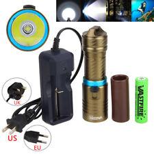 Waterproof 10000LM XM-L2 LED Scuba Diving Flashlight Torch 18650 Camping Light L