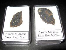 Azores Volcanic lava bomb rock slice in display case 1 per bid Miocene Age 5 Myr
