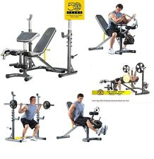Adjustable Bench Press Rack Workout Olympic Workout Gold's Gym Quads Hamstrings