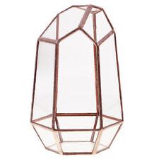 Irregular Glass Geometric Terrarium Box Plant Planter