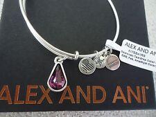 Alex and Ani FEBRUARY AMETHYST TEARDROP Silver Charm Bangle New Tag Card & Box
