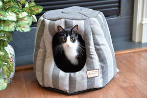 Armarkat Striped Hooded Cave Cat Kitten Hut Bed Striped Pearl and Putty C30CG