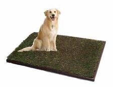 TRAINING POTTY TRAY-PET PATCH OF GRASS