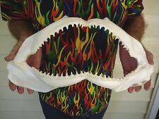 "(sj01-23) 18"" COMMON BLACKTIP black tip SHARK jaw sharks jaws teeth biology"