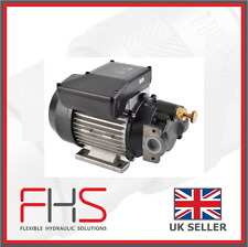 Electric Oil Transfer Pump - Piusi Vane Pump 230V