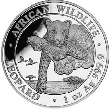 Somalia 100 Shilling 2020 Leopard 1 Oz Silbermünze