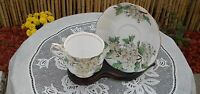 Royal Albert Cup Saucer Bone China England Flower of Month HAWTHORN May