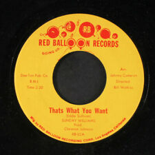 SUNDAY WILLIAMS: Thats What You Want / You've Hurt Me Now 45 (funky Crossover S