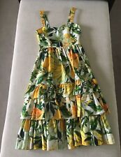 H&M LEMON PRINT FLORAL DRESS COTTON POPLIN PRINT TREND DRESS BLOGGERS UK 14 NEW