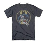 DC COMICS BATMAN ROBIN TEAM Licensed Adult Men's Graphic Tee Shirt SM-5XL