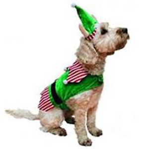 Rosewood Festive Dress Up Coat - Elf Suit & Hat