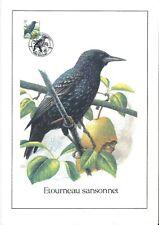 FDC 2638 - Oiseau Buzin sur gravure format A4 !