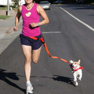 Waist Pet Dogs Leashes Jogging Nylon Puppy Collars Lead Adjustable Walking Leash