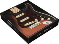 Genuine Fender Pre-Wired Strat Pickguard Vintage Noiseless SSS Tortoise Shell