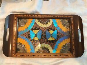 Vntg Tray Butterfly Wing Art Wood Inlaid Carlos Zipperer Rio Branco Brasileira