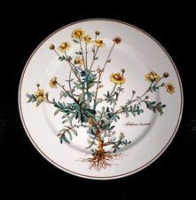 Beautiful Villeroy Boch Botanica Dinner Plate