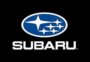 SUBARU OEM 2015 XV Crosstrek Rear Suspension-Knuckle Spindle 28411FJ060