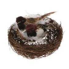 Holiday decorative Bird Nest+ 2x Artificial Feather Birds+ 2xEggs Home Craft