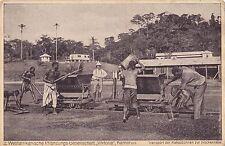 """K 25-Camerun sua piantagione società """"Viktoria"""", trasporto dei semi di cacao, UGL"""