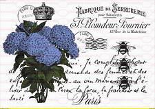 1693 Kaufe Jetzt Bügelbild Shabby Hahn Postkarte Chic Schrift Paris French Vintage A4 No Bügelbilder