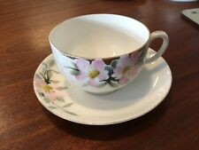 VTG Hand Painted NIPPON Cup And Saucer