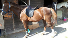"Pony-Vielseitigkeitssattel Kieffer  Aachen 16"" Sitz"