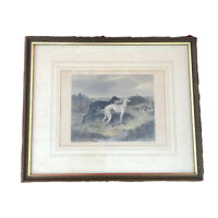 """1837 Antique Hunting Engraving Coloured Print — """"Coursing"""" Greyhounds — Cunliffe"""