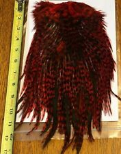 Whiting Silver Grade American Rooster Saddle, Grizzly dyed Red, Fly Tying Nr