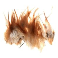 50x Rooster Feather DIY Decor Creative Jewelry Hats 10-15cm Z9G8