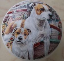 Cabinet Knobs W/ American Staffordshire Terrier Family Bully Pitbull Dog