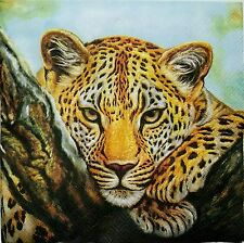 CAT LEOPARD 2 individual LUNCH SIZE paper napkins for decoupage 3-ply