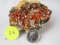 24) Red Vanadinite Black Matrix Morocco Crystal High Grade - Morroco 120g