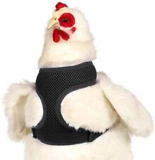 Valhoma Chicken Harness - Black Small