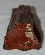 Colorful Vintage Rough Display Specimen Piece of Red Petrified Wood Forest 9 oz.