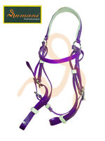 RUMANI High Quality PVC Horse BARCOO BRIDLE - Various Colours, All Sizes